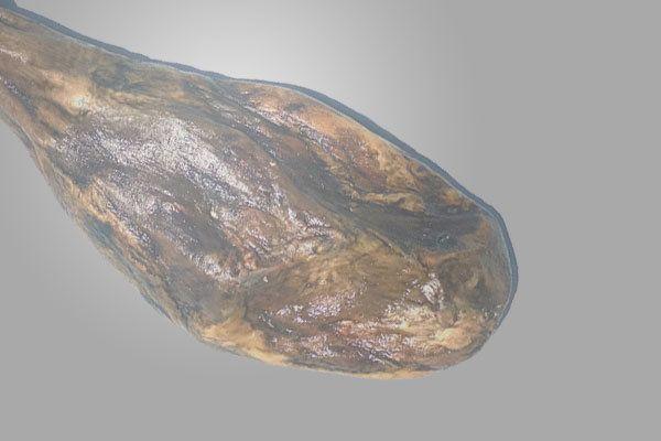 jamón de jabugo